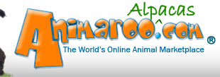 Alpacas and Alpacas and Pets - Animaroo